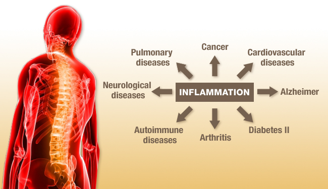 how to cut inflamation int he body